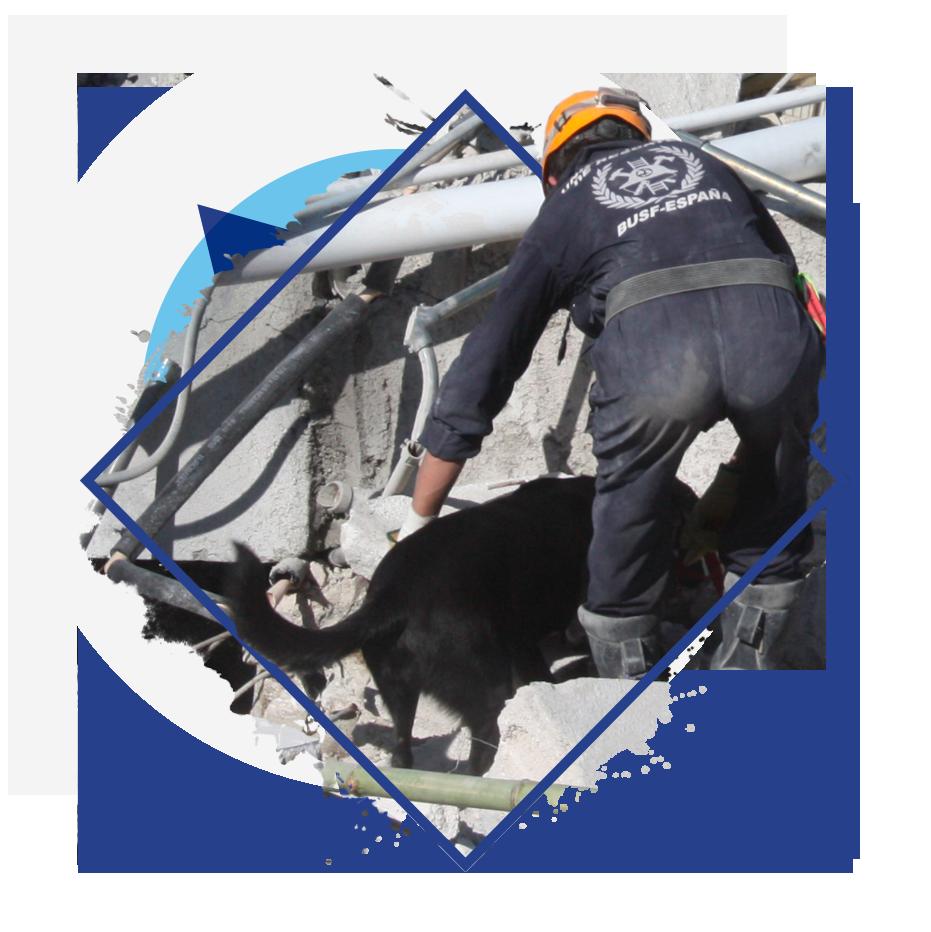 BUSF-Unidad Canina