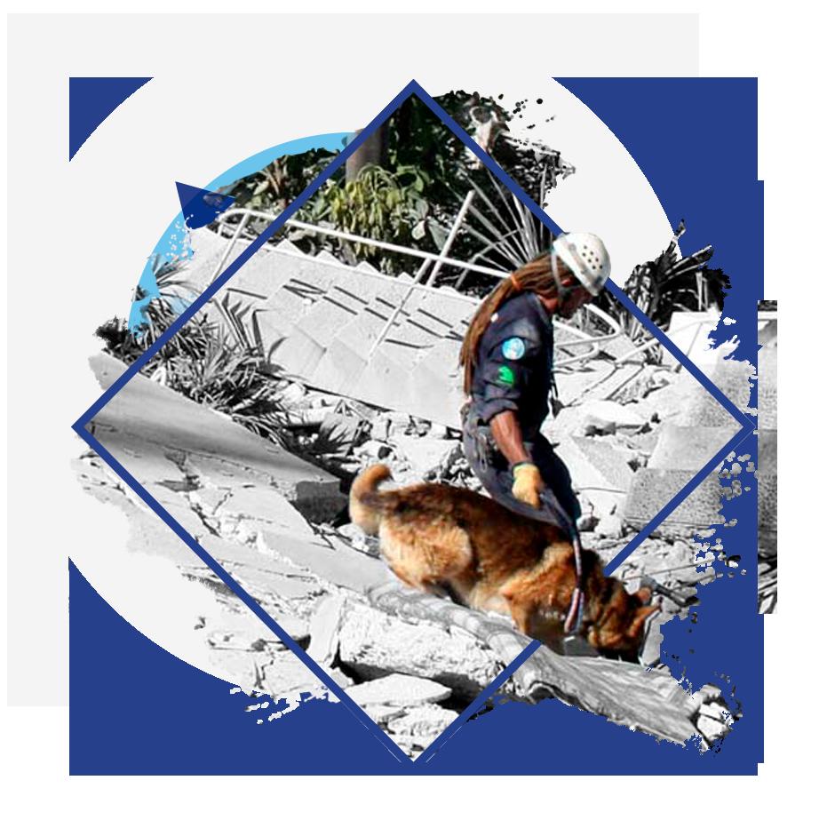 BUSF - Unidad Canina