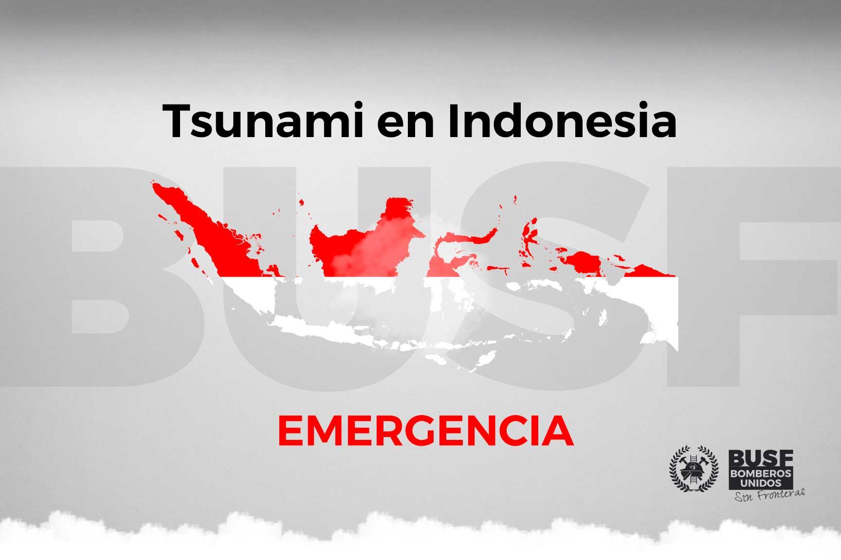 Tsunami Indonesia. Ayuda